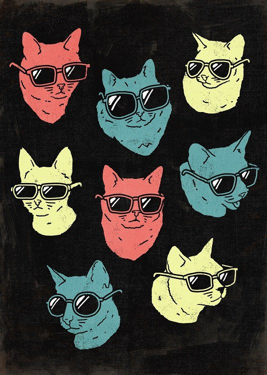 cool cat poster