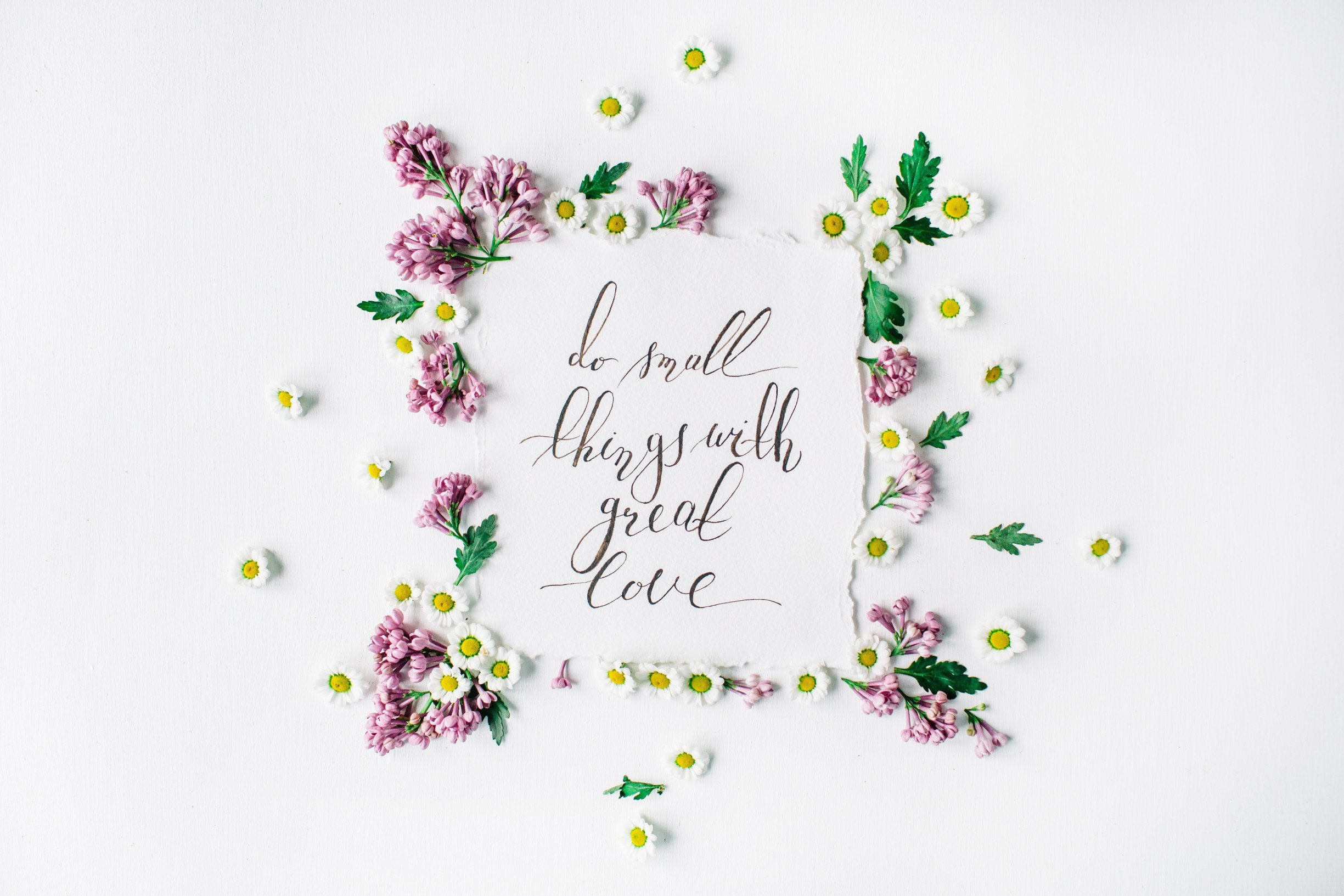 flowers leaves hand-written notes
