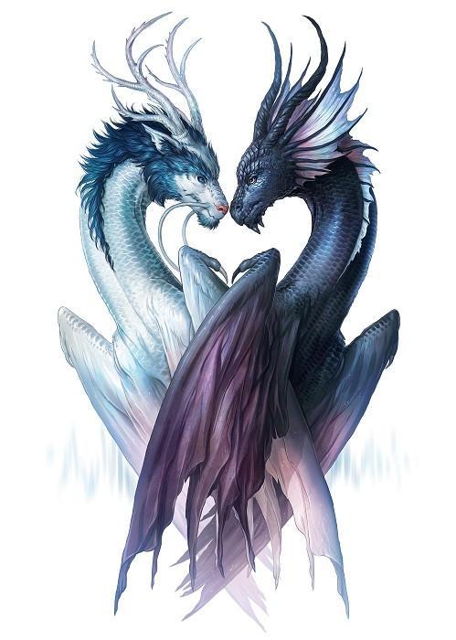 dragons yin yang