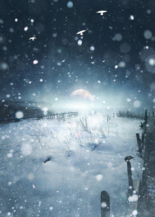 winter-time-season-snow-art-design-illustration-landscape