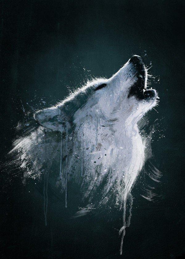 winter-time-season-snow-art-design-illustration-wolf-wild