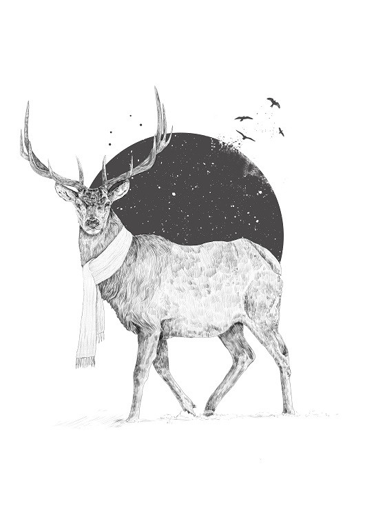 deer bw poster