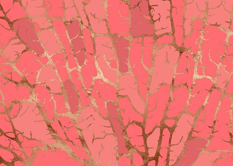 pantone living coral poster