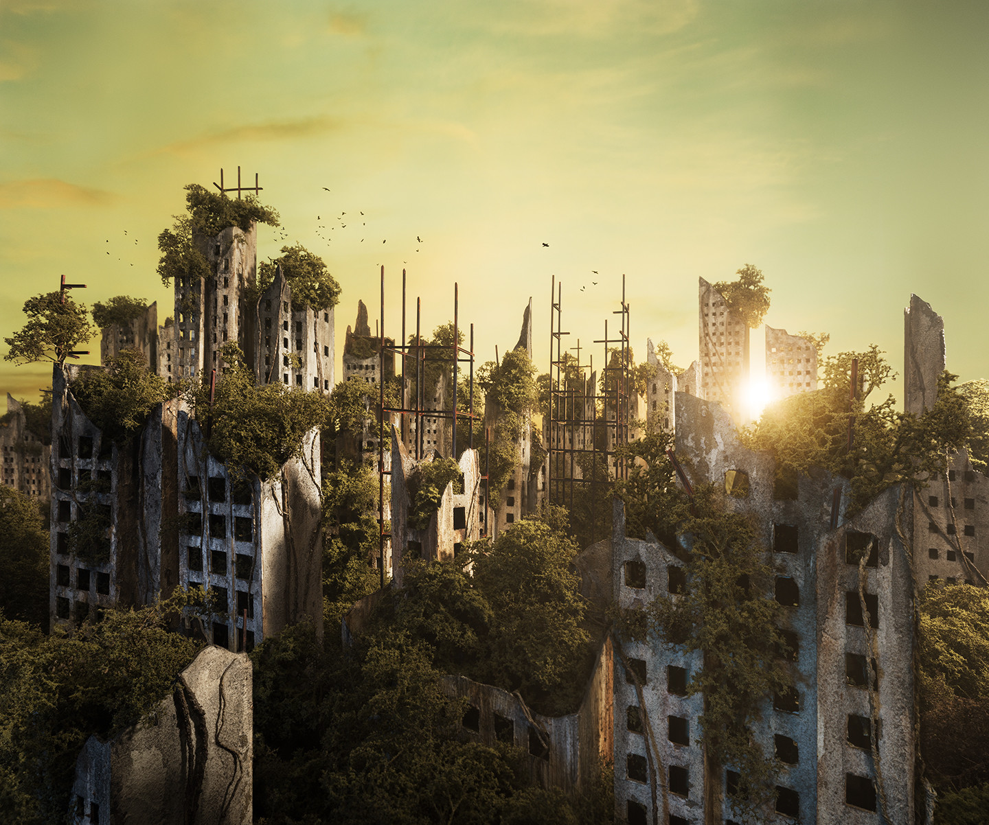 dawn in the abandoned city