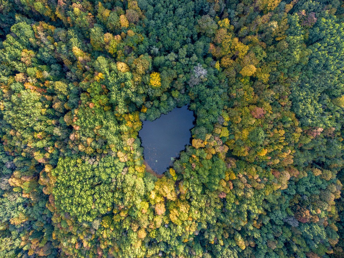 aerial-autumn-view-forest-lake-in-russia