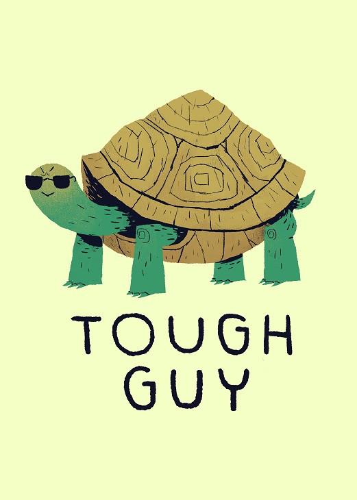 louis ros turtle
