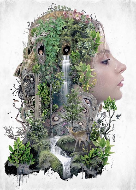surreal nature illustration