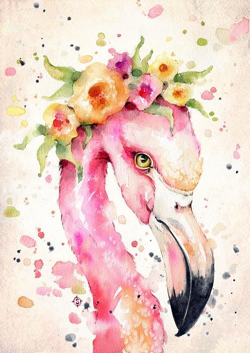 watercolor flamingo illustration