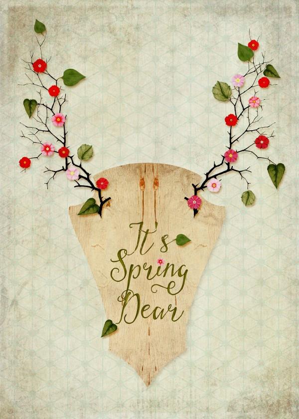 spring-design-flowers-floral-art