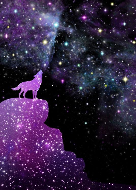 Veronika Limonov - galaxy animal