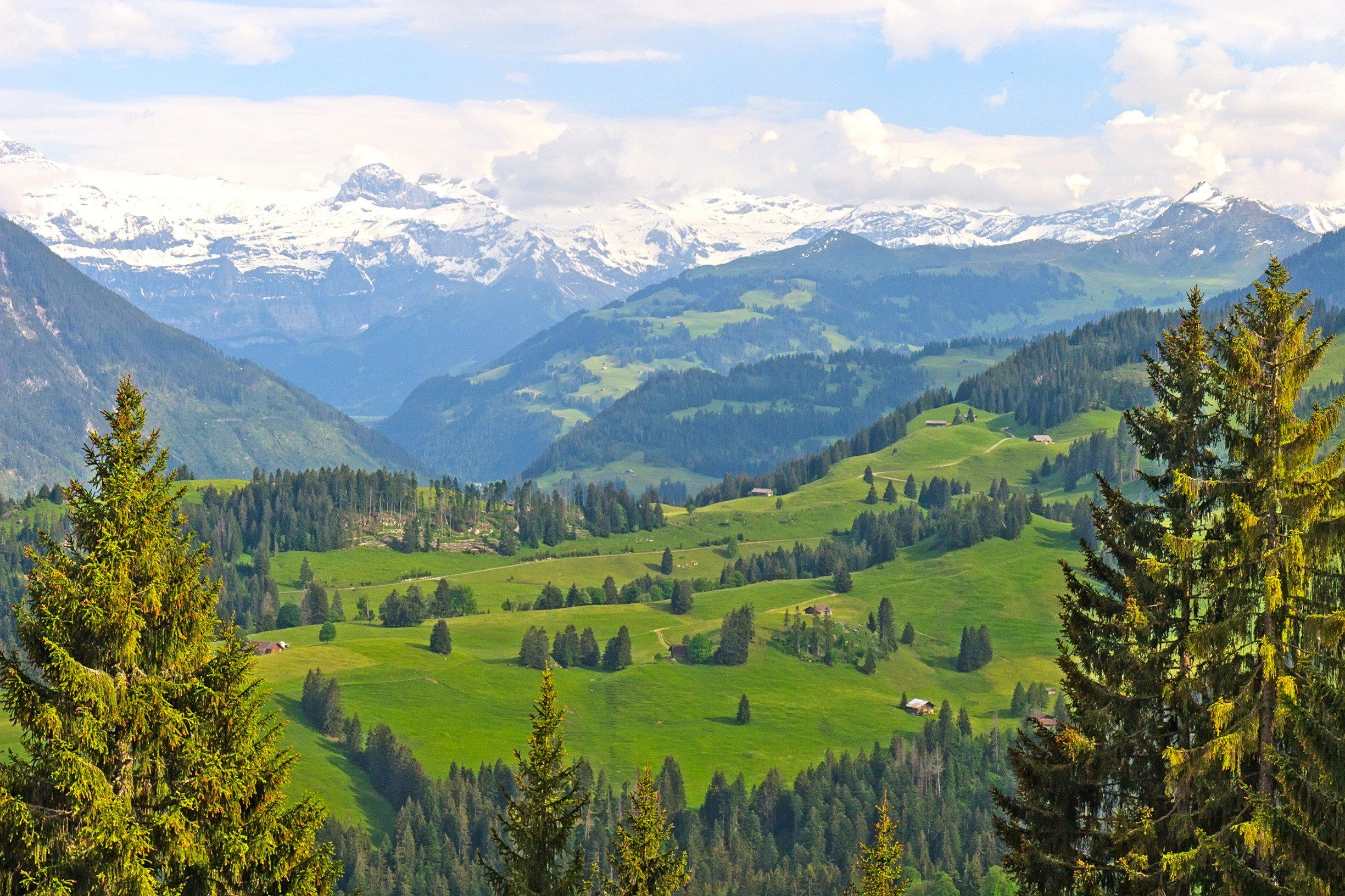Swiss Alps The Magic Mountain by Thomas Mann