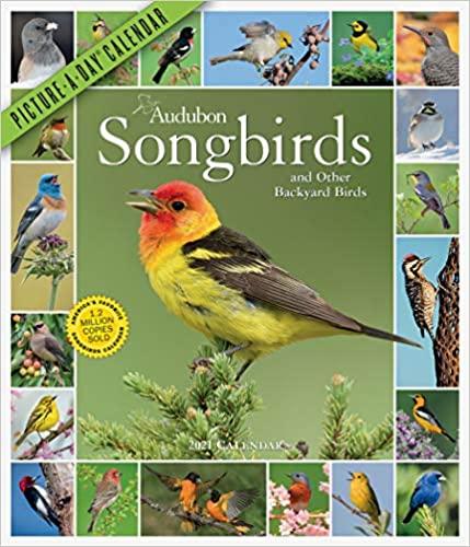 Audubon Songbirds and Other Backyard Birds wall calendar