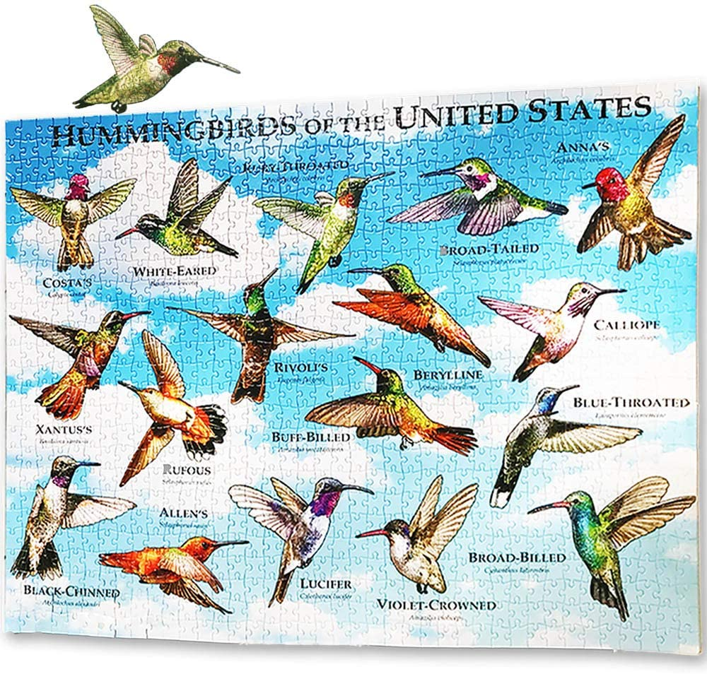 Hummingbirds of the United States jigsaw puzzle
