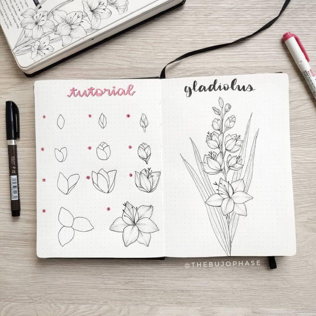step-by-step gladiolus doodles