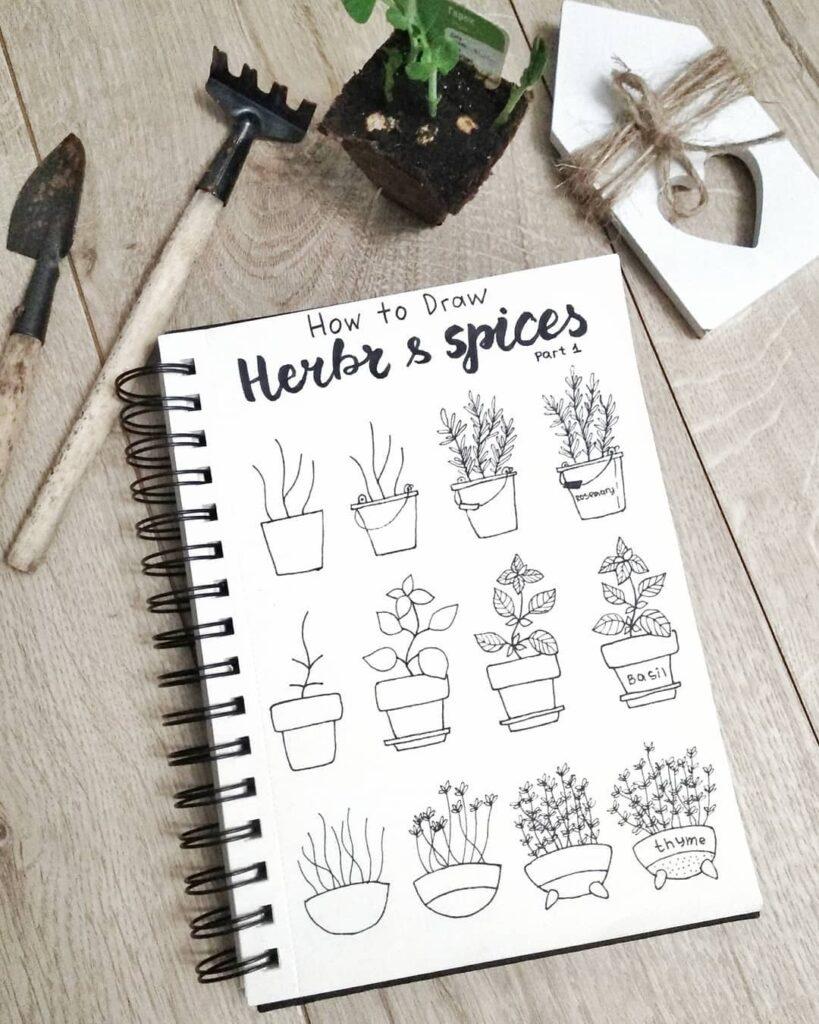 step-by-step herbs doodles