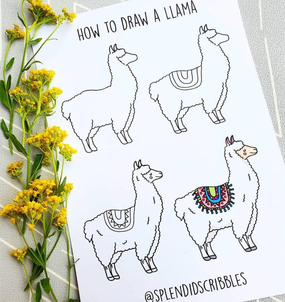 how to draw a cute llama