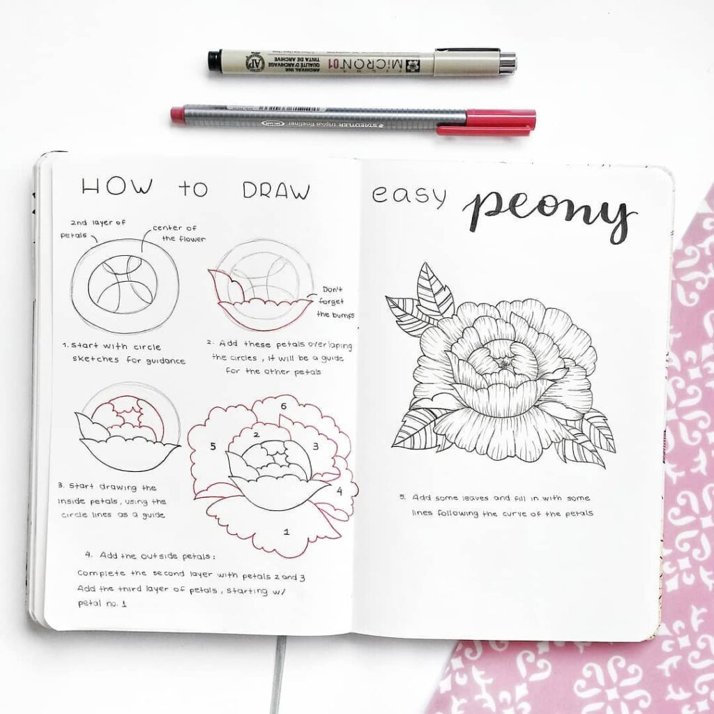 step-by-step peony doodles