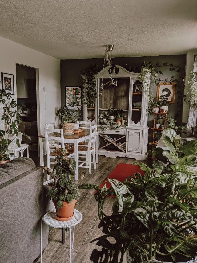 living room yoga space