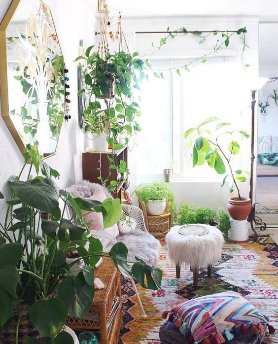 bright meditation room with plants
